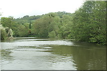 ST6968 : River Avon below Saltford Lock by Pierre Terre