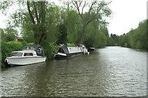 ST6669 : River Avon below Broad Mead by Pierre Terre