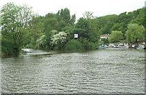 ST6469 : River Avon above Hanham Lock by Pierre Terre