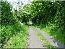 NY1137 : A Green Lane by Bob Jenkins
