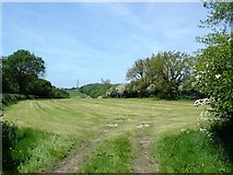 SJ1373 : Caerwys fields by Dot Potter