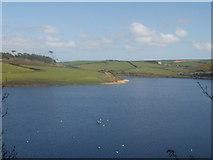 SW6424 : Loe Pool by Tim Green