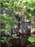 SE0619 : Disused penstock next to the Black Brook, Stainland by Humphrey Bolton