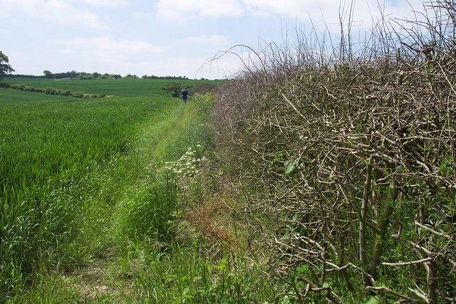 Staffordshire Way
