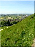 ST5038 : Looking down towards Glastonbury by Linda Bailey