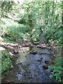 ST5647 : Stream in Biddlecombe by Sharon Loxton