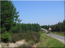 SE7995 : Cropton Forest Road by Stephen Horncastle