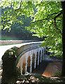 SK1790 : Beeches by Hollin Clough bridge by Espresso Addict
