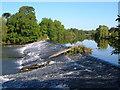 SX9390 : St James Weir, River Exe by Derek Harper