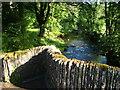 SX7255 : River Avon from Bickham Bridge by Derek Harper