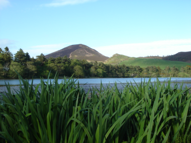 Bowden Loch / Eildon Mid Hill