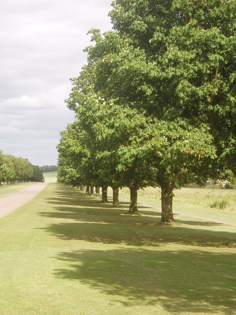Driveway to Wrest park