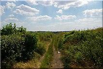 TQ5571 : Hawley Bridle Path by Glyn Baker