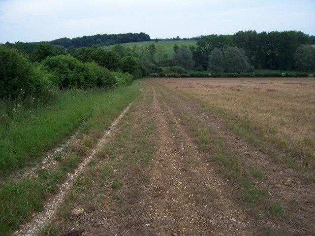 'Road' across the field.