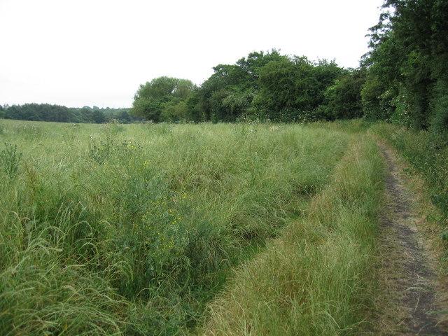 Footpath through fields near Jacksdale, Nottinghamshire.