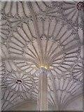 SP5105 : Christ Church vaulting by Hugh Chevallier
