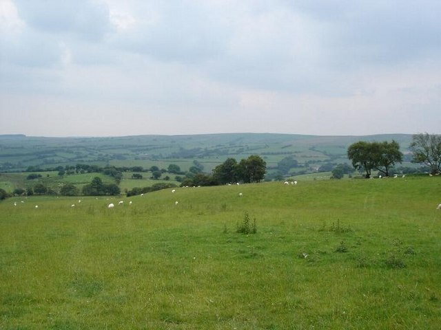 Pen y Cefn fields