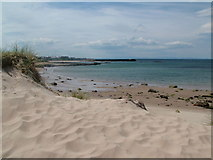 NJ1570 : Dunes at Hopeman East Beach by Richard Slessor