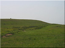 NZ0392 : Greenleighton Hill by Les Hull