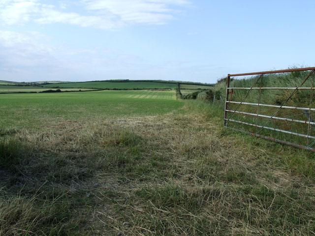Field to the West of Llanfachraeth