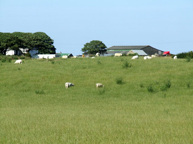Grazing land near to farm buildings