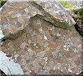 L7656 : Lichen 'map' by Espresso Addict