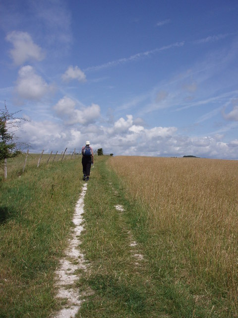 South Downs Way: Balmer Down