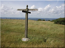 TQ3112 : Keymer Post: South Downs way by Sheila Russell
