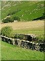 NY3715 : Barn, Grisedale Beck by Mick Garratt
