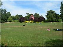 TQ3473 : Dog exercise area, Horniman Gardens by Danny P Robinson