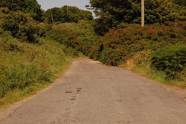 Old Donaghadee road near Orlock