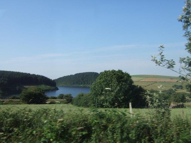 Rosebush reservoir on a summer day
