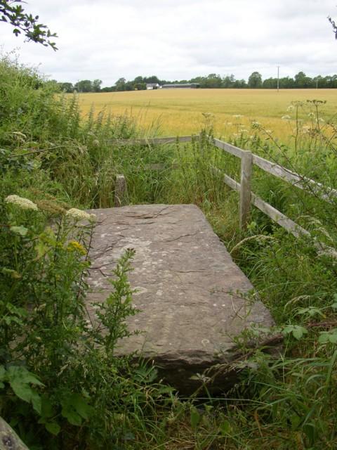 Ogham stone by side of lane, Ballyboodan, Knocktopher, Co. Kilkenny