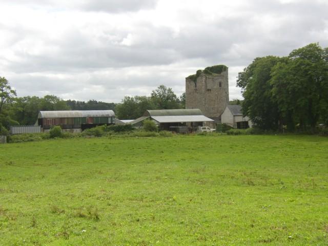 Castle in a farm near Hugginstown, Co. Kilkenny