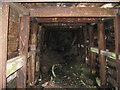 SJ2854 : Inside mine adit by Peter Craine