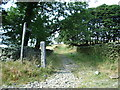 SD6479 : The Bridleway to Brownthwaite by Alexander P Kapp