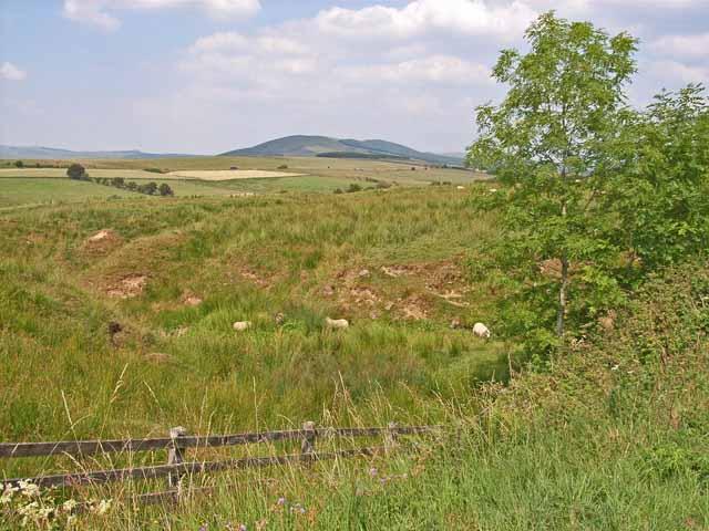Pasture near Liddel Castle