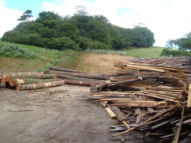 Timber yard on Green Lane, and Winnowing Close Plantation