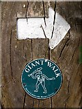 ST6601 : Giant Walk waymarker, Cerne Abbas by Jim Champion