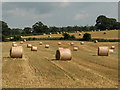 NY3846 : Straw bales, Raughton Head by Andrew Smith