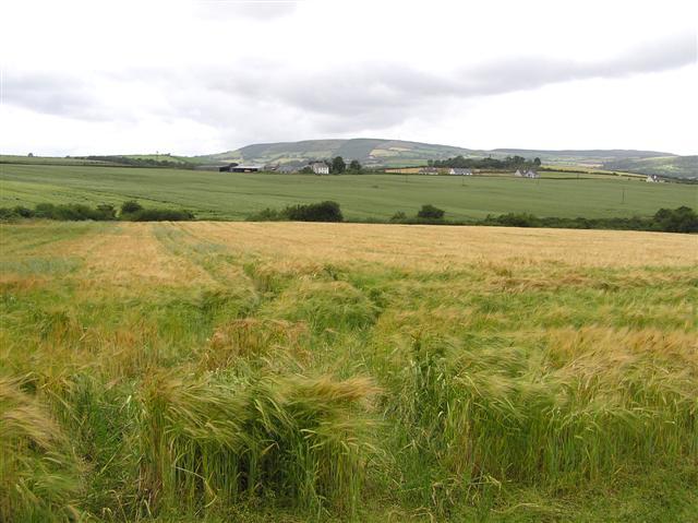 Binnion Townland