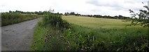 C3303 : Tironeill Townland by Kenneth  Allen