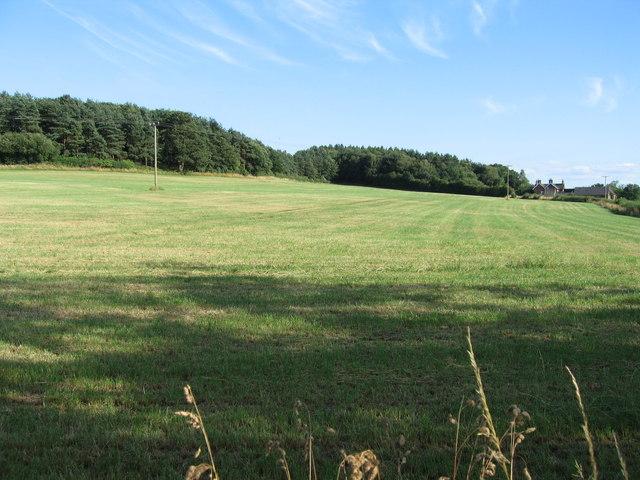 Newton Hurst, near Abbots Bromley, Staffordshire.