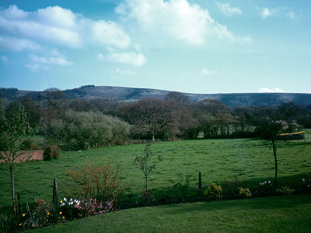 Looking towards Didling Hill from Piper's Farm
