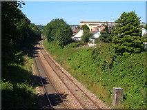 SX9065 : Railway line north of Torre by Derek Harper