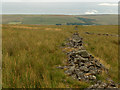 NY7543 : Old walls, Middle Fell by Andrew Smith