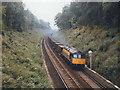 TQ5158 : Railway cutting by Stephen Craven
