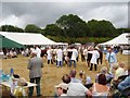 SO6069 : National Hereford Show by Richard Webb