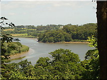 S5210 : River Suir from Mount Congreve Gardens by Clive Barry