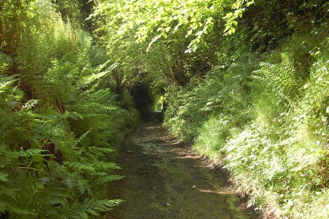 The last sectionof Long Lane before Luckwell Bridge